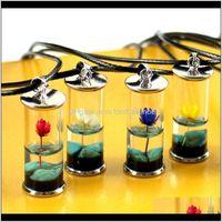 Pendant Necklaces & Pendants Jewelrybohemian Dried Lotus Flower Glass Bottle Pendent Necklace For Women Men Creative Handmade Resin Sweater