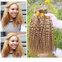 Brazilian Kinky Curly Virgin Hair Weave Colored 27# Human Hair 3 Bundles Top Selling Brazilian Virgin Human Hair Weave Extensions