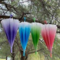 Ombrelloni sfumato colore pioggia elegante semplicità bolla manico lungo la maniglia trasparente ragazze per bambini fungo ombrello trasparente ambientale G4W2539
