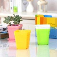 Mini Flower Pots with Chassis Colorful Plastic Nursery Pot Flowers Planter for Gerden Decoration Home Office Desk Planting Hhc7574
