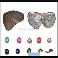 Gevşek Takı Bırak Teslimat 2021 Üçüzler Ile Doğal Tek İstiridye Pearls Boncuk Doğum Günü Hediyesi İnci Parti için 10 Anlamlı Renk (6-8mm, 3