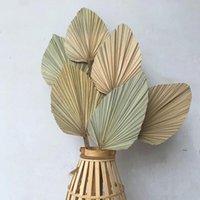 10 teile / los echte CATTAIL-Lüfter konserviert trocken natürliche frische Palmblätter für immer Pflanzenmaterial für Haus Hochzeitsdekoration FWD6639