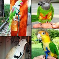 Other Bird Supplies Adjustable Parrots Harness Leash Anti-Bite Training Rope Outdoor Flying -Drop