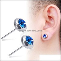 Jewelry Simple Fashionable Boutique Zircon Stud For Men And Women Models Stainless Earrings Titanium Steel Jewelry Drop Delivery 2021 4Hkuq