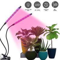 Plomb de lumières pour plantes d'intérieur Lampes de croissance à spectre complet avec minuterie Dual Head Head 40w Clip Succulent Growlight 3 Modes de commutation 9 Dimmable luminosité