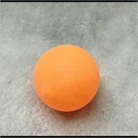 3 스타 전문 테니스 공 40mm 29g 핑퐁 경쟁 훈련 공 테이블 TL3HM iulo3