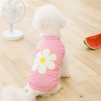 2021 Designer Pet Dog Apparel Lady Summer thin waistcoat sunscreen T-shirt Breathable Fashion Clothes Two legs wear For Middle Small Teddy Dogs SMLXLXXL