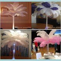 Decoración de fiesta Suministros de eventos Festivo Home Garden 300 PCS por lote 15 ~ 20cm Blanco Avestruz Feather Plume Craft Table Body CenterPi
