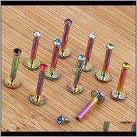 Labret, Piercing Corpo Jóias Gota entrega 2021 Bola de Aço Inoxidável Top Lip Studs Trogus Aranho Anéis Monroe Barras Labret Rainbow Internamente CA