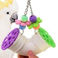 Andere Vogelbedarf Papageispielzeugbiss Pipeline Acryl String Toys Intelligenzschleifständer Kunststoff TOPORCHID