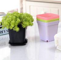 Mini pots de fleur avec châssis plastique coloré pépinière pot de fleurs jardinière pour la décoration de gerden maison bureau bureau plantation zze6141