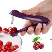 الإبداعية الكرز stoner pitter مزيل الزيتون الأساسية كورر إزالة حفرة أداة بذور الفاكهة مطبخ أداة اكسسوارات ستونر DHB7863