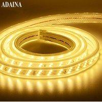 Plástico cubierto impermeable LED tira de tira de luz DC220V Cinta de diodo RGB SMD5730 120 Fichas / m Decoración de hogar al aire libre cálido Ledstrip tiras