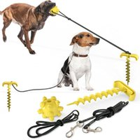 Outdoor Pet Supplies Multifunctional Toy Leash Dog Ground Pile Nail Lead Walking Chewing Ball Collars & Leashes