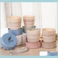 Tassen Untertassen Trinkküche, Essbar Home Garten 130ml Kreative Klappwasser Outdoor Weizen Strohmaterial Faltbare BPA Lea