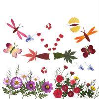 Establecer creativo prensado flor seco + hojas plantas herbario para joyería postal tarjeta invitación teléfono estuche de teléfono Bookmark Art DIY flor decorativa