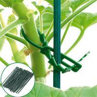 Equipos de riego 50 unids Reutilizable Jardín Cable Ties Soporte de planta Conectores Sujetador Árbol Bloqueo Herramientas ajustables Accesorios Inicio