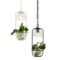 Sarkıt Nordic Bitki Lambası Avize 1-3 Kafaları Demir Cam Şişe LED Bahçeleri Deco Restoran Bar Cafe için Asılı Işık Fikstürü