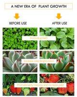LED COB 리드 성장 빛 더블 칩 150 300W 온실 및 실내 식물 냄비에 대 한 전체 스펙트럼 램프 야채 씨앗 꽃 성장