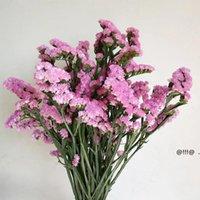 Erba di cristallo naturale secco fresco conservato non dimenticarmi non fiori, reale per sempre amante erbe ramo per la decorazione della tavola domestica FWF6085