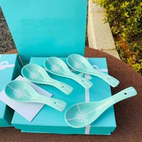 New Style 5-piece stoneware colorful spoon set