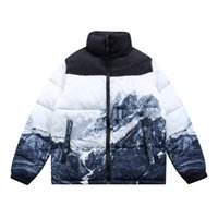 TNF снег гора CP по дизайнеру лицом к северную куртку мужчины пальто человек падения женщин 1996 куртки зимние пальто с капюшоном одежда хлопка одежда мода теплый стенд воротник