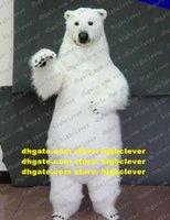 Weiße Meer Bären Eisbär Maskottchen Kostüm Erwachsene Zeichentrickfilm Charakter Outfit Anzug Öffnen Eine Business High Street Mall Zz4873