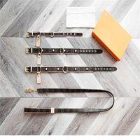 Colliers de chien classiques Laisse PU Lettre Motif Maison de luxe Design Fournitures pour animaux de compagnie réglables