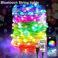 5 M 10 M 20 M USB Peri Dize Işıkları Müzik Sync Renk RGB LED Şerit Bluetooth Uygulama Kontrol Bakır Tel Dizeleri Stokta