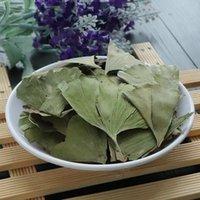 الجنك المجفف الطبيعي Biloba يترك الشاي الشاي الصيني الشاي، هدية خضراء خضراء الزفاف الديكور الزفاف الزخرفية