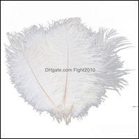 Evento de decoración Suministros festivos Home Garden10PCS Avestruz Blanco Pluma de plumas 20-25cm para pieza central Fiesta de boda Suministro Decoración con características