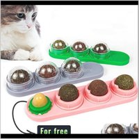 Supplies & Gardenpet Edible Catnip 1 2 3 4 Pcstreat Balls Pet Toys Cat Mint Cats Home Chasing Game Toy Clean Teeth Stoh1 Drop Delivery 2021 Q