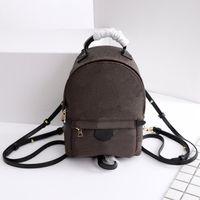 Designer Ladies Mini Palm Springs Division Bag Borsa a tracolla Borsa a tracolla Piccola pelle