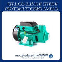 Elevata qualità QB60 370W Famiglia Auto-Primering Pressurizzato Acqua solare Pompa di circolazione Pompa Centrifuga Elettrica Pompa acqua centrifuga Piscina Piscina Giardino VMOFO