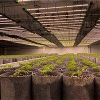 Spectrum Full Spectrum 640W 1000W 1200W 1500W 2000W LED Grow luci AC85-265V Doppio pianta chip Lampade per piante da chip Tenda per la crescita