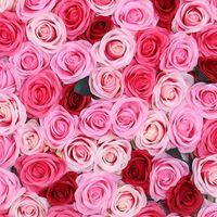 Fleurs décoratives Couronnes 50 pcs Faux de soie artificielle Rose Rose Heads Flowers Bouquet de bricolage Bouquet Home Mariage Artisanat Décor Fournitures DSS899