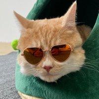 Köpek Giyim Pet Ürünleri Güzel Vintage Kalp Kedi Güneş Gözlüğü Yansıma Gözlük Gözlük Küçük Pos Sahne Aksesuarları için