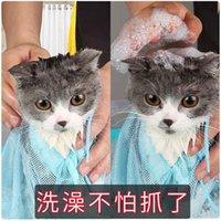 Suministros de aseo de perros Lavado Artefacto PET CLIPPERS CLIPPERS Anti Scratch Baño de baño fijo Productos de limpieza IEEQ