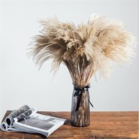 Pampas Grass Christmas Decor Real 20 Pcs Reed Natural Dried Plant Ornaments Wedding Flower BunchNO VASE Decorative Flowers & Wreaths
