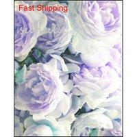 Autres fournitures Patio pelouse Drop Livraison 2021 10 PCSBag Couleur mixte Couleur chinoise Arbre de rose Chinese Graines Belle décoration Plante fleur de bonsaï pour