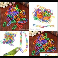 Other Supplies Plastic Chain Link Bird Toys Colour Parrot Birds Type C Gnaw Plaything A Pack Of 100 Pcs Arrival Multicolor 6 5Jx J2 C6 Tyc07