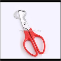 Tools Cutter Stainless Steel Quail Egg Scissors For Home Kitchen Green Yellow Black Red Ewb1955 Cfzlk 1Xft9