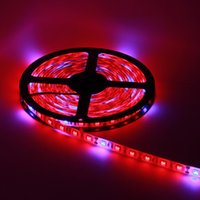 5050 LED grow light Strip grown lighting 12V Red Blue Waterproof lights for Greenhouse Hydroponic plant growing lamp 1 M 60 LEDs