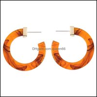 Stud Jewelrytrendy Earring Mti-Color Small Round Hoop Women Circle Leopard Acrylic Acetate Tortoise Shell Hoops Alloy Earrings Drop Delivery