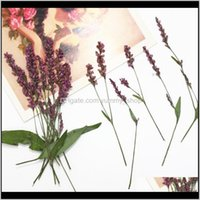Decorative Wreaths Home & Garden12Pcs Natural Pressed Dried Leaves Persicaria Flowers Diy Scrapbooking Phone Er Crafts Festive Party Supplie