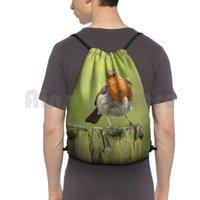 Robins visas när de är nära ryggsäcken Drawstring Bag Riding Climbing Gym Bag Robin Bird British Robin Red Breast