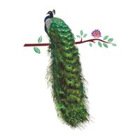* 58cm PVC Wall Sticker Peacock Legislation Branch Living Room Entrance Bedroom Sofa Decoration Wallpapers