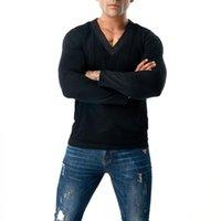 Men's T-Shirts Fashion Slim Fit Long Sleeve Plain T-shirt Casual V Neck Blouse Shirts Tops Tee Mesh Male