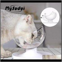 Suministros Home Garden Mysudui Antiamblaje Bowl para perros PET PET Dispositivo de agua Separable Cat Dispensador de agua Cuencos Alimentadores Mascotas Dla PSA