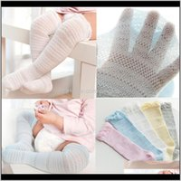 Clothing Baby, & Maternityjaycosin 0-4Years Cute Baby Boys Girls Cotton Mesh Breathable Soft Born Infant Non-Slip Long Socks Kids Knee High1